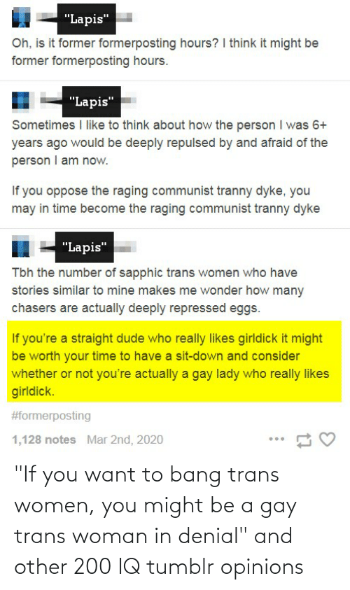"opinions: ""If you want to bang trans women, you might be a gay trans woman in denial"" and other 200 IQ tumblr opinions"