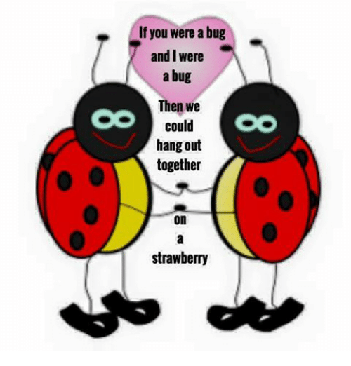 Bug, You, and Strawberry: If you were a bug  and I were  a bug  Then we  could  hang out  together  on  strawberry