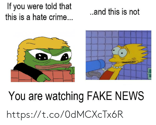 Crime, Fake, and News: If you were told that  this is a hate crime...  ...and this is not  You are watching FAKE NEWS https://t.co/0dMCXcTx6R