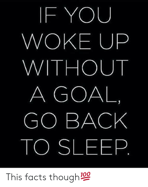 go back to sleep: IF YOU  WOKE UP  WITHOUT  A GOAL  GO BACK  TO SLEEP This facts though💯