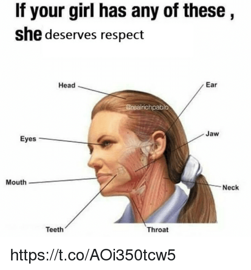Head, Memes, and Respect: If your girl has any of these  she deserves respect  Head  Ear  real  richpablo  Jaw  Eyes  Mouth  Neck  Teeth  Throat https://t.co/AOi350tcw5