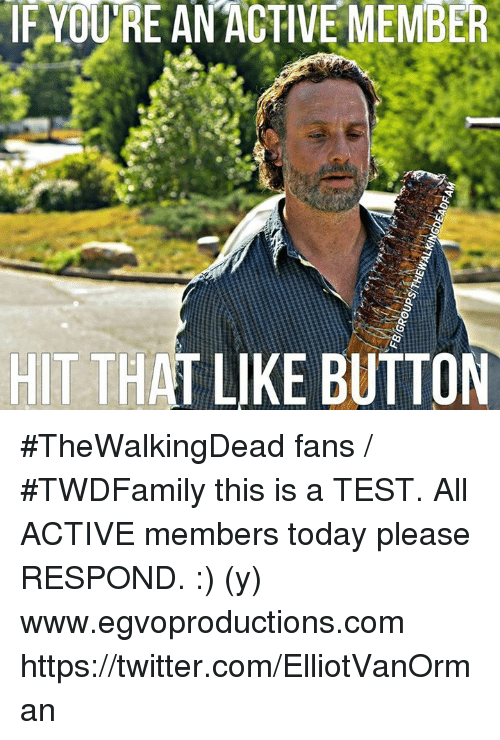 Memes, 🤖, and Thewalkingdead: IF YOURE AN ACTIVE MEMBER  HIT THAT LIKE BUTTON #TheWalkingDead fans / #TWDFamily this is a TEST. All ACTIVE members today please RESPOND. :) (y)  www.egvoproductions.com https://twitter.com/ElliotVanOrman