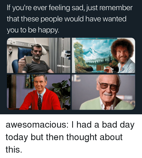 Bad, Bad Day, and Tumblr: If you're ever feeling sad, just remember  that these people would have Wanted  you to be happy awesomacious:  I had a bad day today but then thought about this.