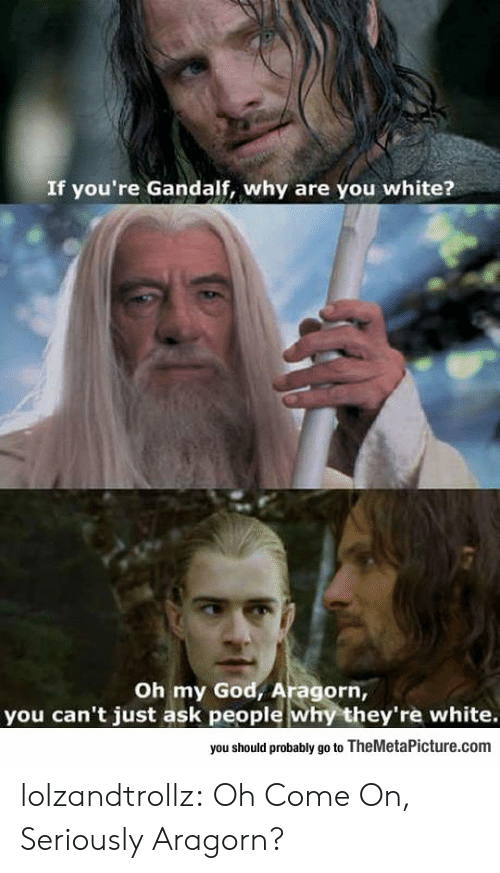 oh come on: If you're Gandalf, why are you white?  Oh my God, Aragorn,  you can't just ask people why they're white.  you should probably go to TheMetaPicture.com lolzandtrollz:  Oh Come On, Seriously Aragorn?