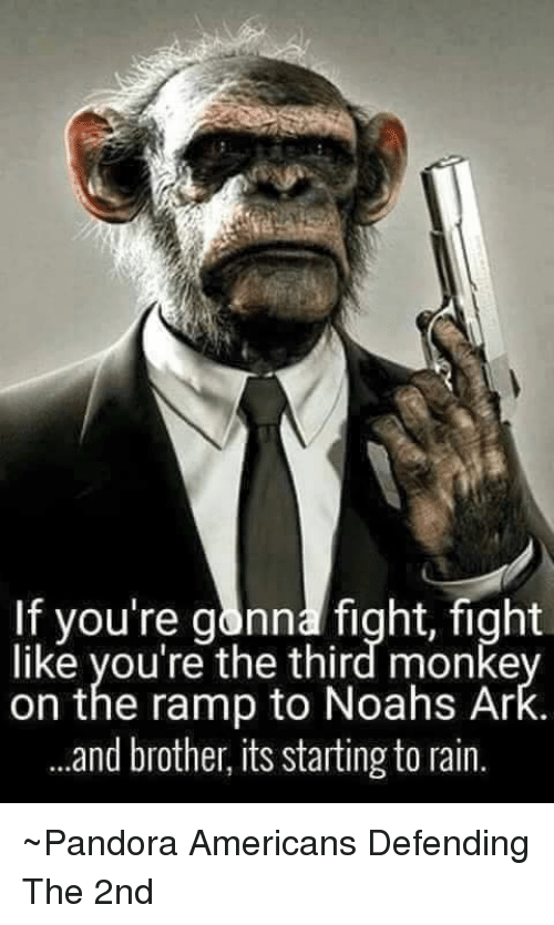 Memes, Noah, and American: If you're gonna fight, fight  like you're the third monke  on the ramp to Noahs Ar  and brother, its starting to rain. ~Pandora   Americans Defending The 2nd