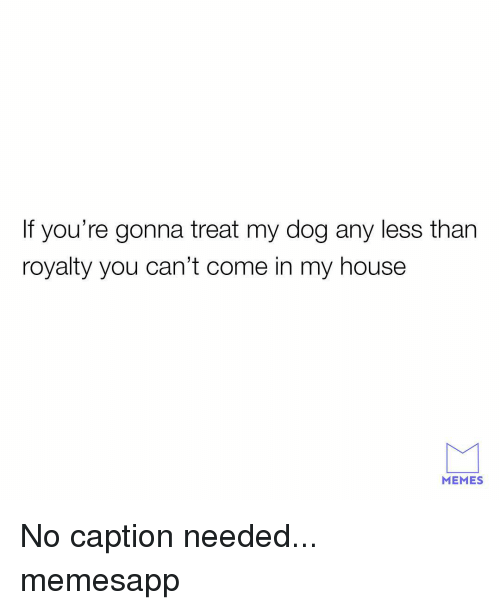 Memes, My House, and House: If you're gonna treat my dog any less than  royalty you can't come in my house  MEMES No caption needed... memesapp