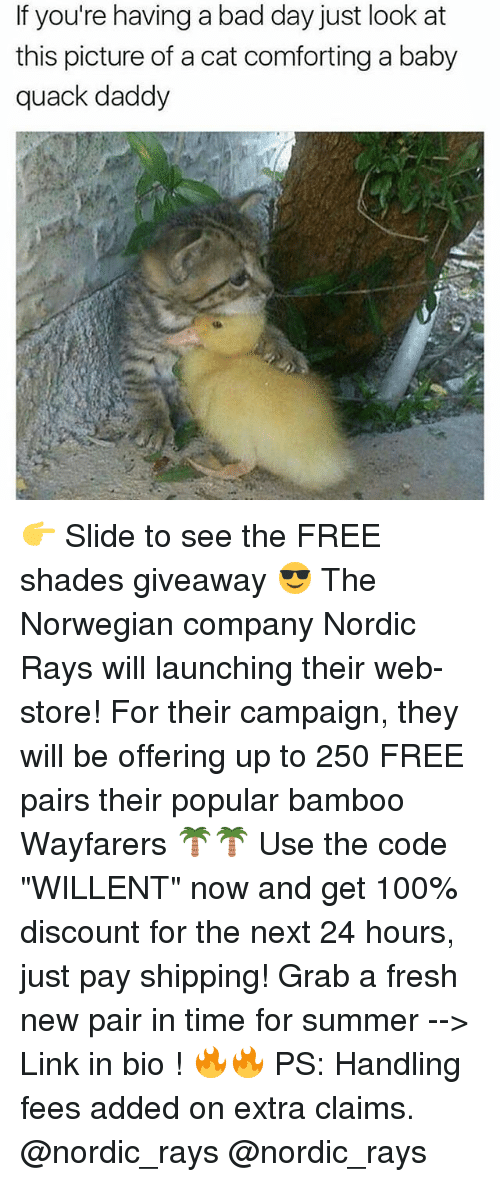 "Anaconda, Bad, and Bad Day: If you're having a bad day just look at  this picture of a cat comforting a baby  quack daddy 👉 Slide to see the FREE shades giveaway 😎 The Norwegian company Nordic Rays will launching their web-store! For their campaign, they will be offering up to 250 FREE pairs their popular bamboo Wayfarers 🌴🌴 Use the code ""WILLENT"" now and get 100% discount for the next 24 hours, just pay shipping! Grab a fresh new pair in time for summer --> Link in bio ! 🔥🔥 PS: Handling fees added on extra claims. @nordic_rays @nordic_rays"