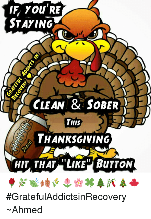 Memes, Sober, and 🤖: IF YOU'RE  STAYING  CLEAN & SOBER  THIS  THANKSGIVING  HIT THAT LIKE BUTTON 🌹🌿🍃🍂🌾🌷🌸🍀🌲🎋🎄🍁 #GratefulAddictsinRecovery ~Ahmed