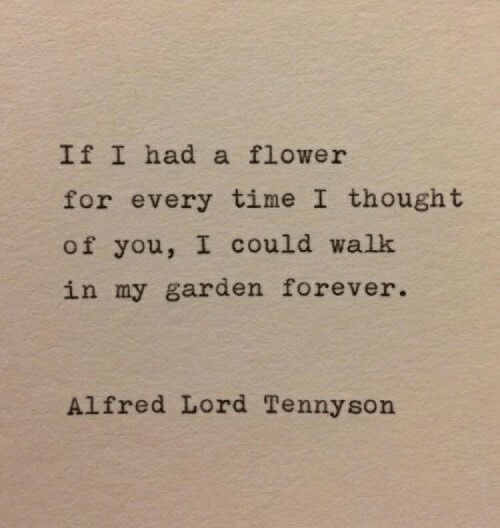 Ifi: IfI had a flower  for every time I thought  of you, I could walk  in my garden forever.  Alfred Lord Tennyson