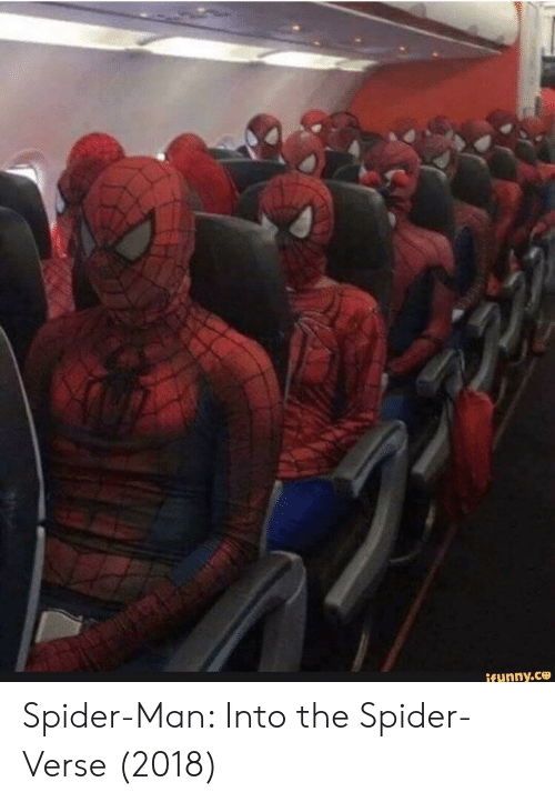 Spider, SpiderMan, and Man: ifunny.C Spider-Man: Into the Spider-Verse (2018)