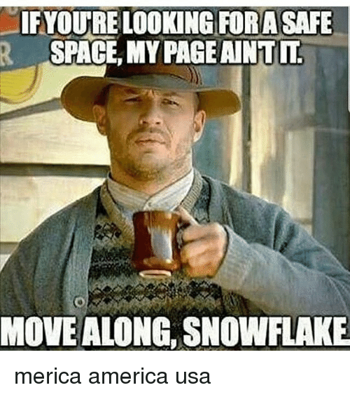 America, Memes, and Space: IFYOURE LOOKING FORA SAFE  SPACE, MY PAGE AINT  MOVE ALONG, SNOWFLAKE merica america usa