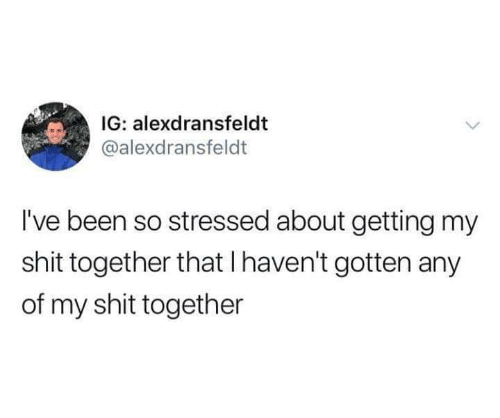 Shit, Been, and Together: IG: alexdransfeldt  @alexdransfeldt  I've been so stressed about getting my  shit together that I haven't gotten any  of my shit together