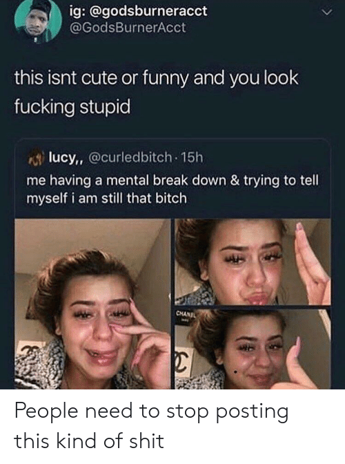 Bitch, Cute, and Fucking: ig: @godsburneracct  @GodsBurnerAcct  this isnt cute or funny and you look  fucking stupid  lucy, Ocurledbitch 15h  me having a mental break down & trying to tell  myself i am still that bitch  CHANIL People need to stop posting this kind of shit