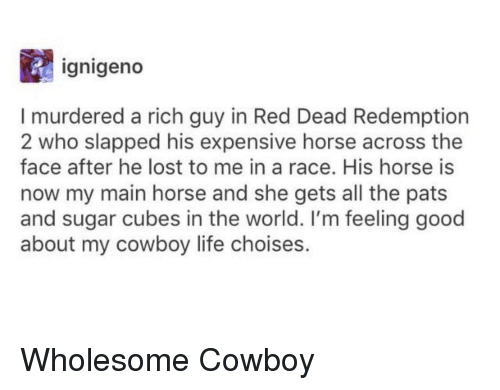red dead redemption 2: ignigeno  I murdered a rich guy in Red Dead Redemption  2 who slapped his expensive horse across the  face after he lost to me in a race. His horse is  now my main horse and she gets all the pats  and sugar cubes in the world. I'm feeling good  about my cowboy life choises. Wholesome Cowboy