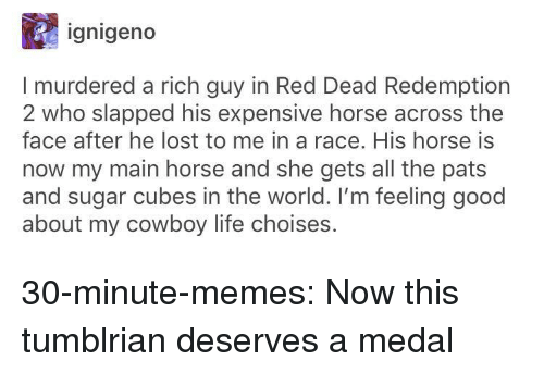 red dead redemption 2: ignigeno  I murdered a rich guy in Red Dead Redemption  2 who slapped his expensive horse across the  face after he lost to me in a race. His horse is  now my main horse and she gets all the pats  and sugar cubes in the world. I'm feeling good  about my cowboy life choises. 30-minute-memes:  Now this tumblrian deserves a medal