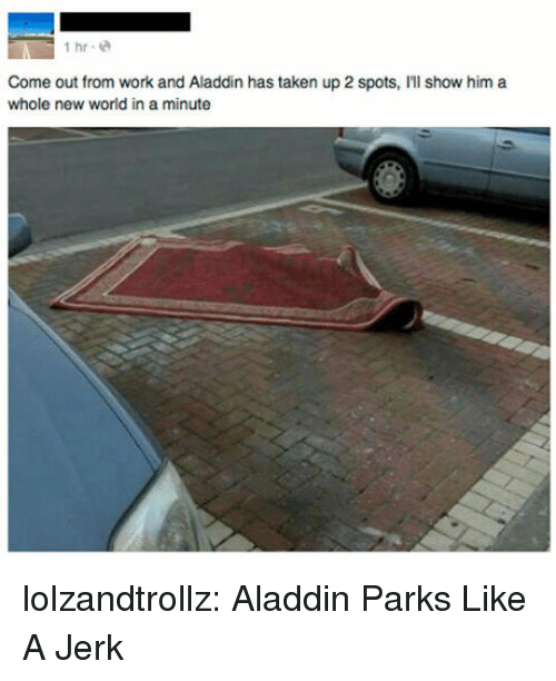 Aladdin, Taken, and Tumblr: İhr.@  Come out from work and Aladdin has taken up 2 spots, I'll show him a  whole new world in a minute lolzandtrollz:  Aladdin Parks Like A Jerk