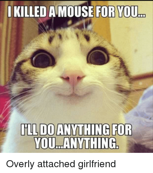 Mouse, Girlfriend, and Attached Girlfriend: IKILLED A MOUSE FOR YOU  ..  YOU. ANYTHING Overly attached girlfriend
