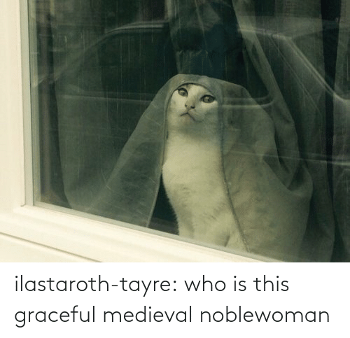 Medieval: ilastaroth-tayre: who is this graceful medieval noblewoman