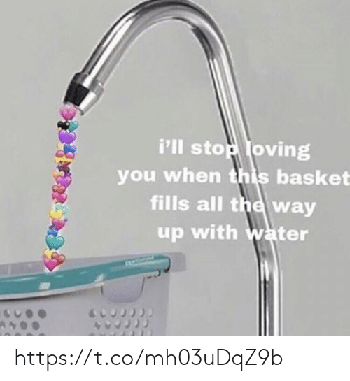Memes, Water, and All The: i'lI stop loving  you when this basket  fills all the way  up with water https://t.co/mh03uDqZ9b