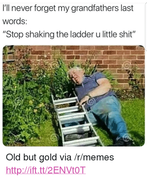 "Memes, Shit, and Http: I'll never forget my grandfathers last  words:  ""Stop shaking the ladder u little shit"" <p>Old but gold via /r/memes <a href=""http://ift.tt/2ENVt0T"">http://ift.tt/2ENVt0T</a></p>"