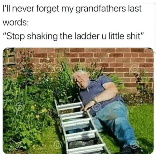 "Shit, Last Words, and Never: I'll never forget my grandfathers last  words:  ""Stop shaking the ladder u little shit"""