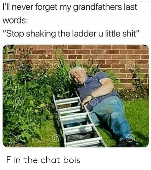 """Chat, Dank Memes, and Last Words: I'll never forget my grandfathers last  words:  """"Stop shaking the ladder u little sh it"""" F in the chat bois"""