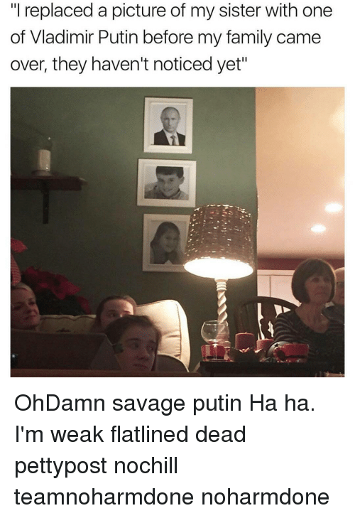 """Memes, Vladimir Putin, and 🤖: ill replaced a picture of my sister with one  of Vladimir Putin before my family came  over, they haven't noticed yet"""" OhDamn savage putin Ha ha. I'm weak flatlined dead pettypost nochill teamnoharmdone noharmdone"""