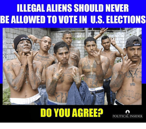 Memes, Aliens, and Never: ILLEGAL ALIENS SHOULD NEVER  BE ALLOWED TO VOTE IN U.S. ELECTIONS  DO YOU AGREE?OTC  POLITICAL INSIDER
