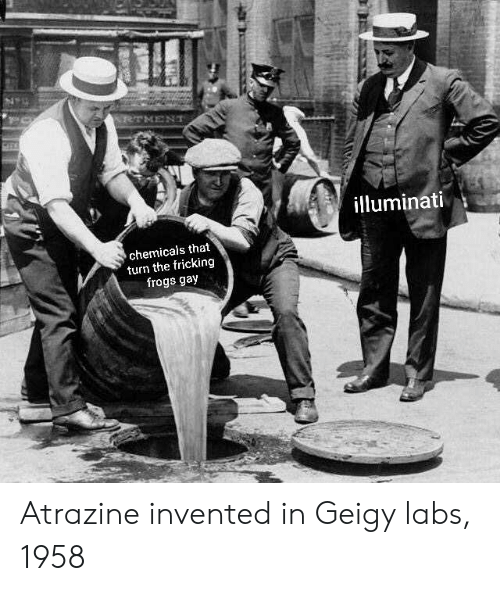 Fricking: illuminati  chemicals that  turn the fricking  frogs gay Atrazine invented in Geigy labs, 1958