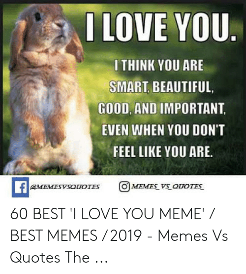 Beautiful, Love, and Meme: ILOVE YOU  I THINK YOU ARE  SMART, BEAUTIFUL.  GOOD, AND IMPORTANT  EVEN WHEN YOU DON'T  FEEL LIKE YOU ARE.  MEVESYSOUOTES 60 BEST 'I LOVE YOU MEME' / BEST MEMES / 2019 - Memes Vs Quotes The ...