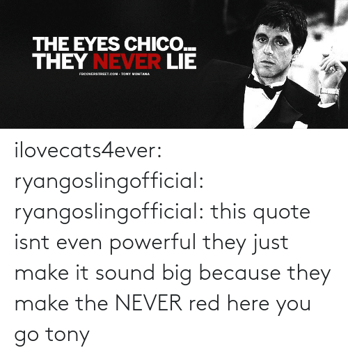 sound: ilovecats4ever: ryangoslingofficial:  ryangoslingofficial: this quote isnt even powerful they just make it sound big because they make the NEVER red  here you go tony