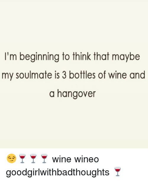 I'm Beginning to Think That Maybe My Soulmate Is 3 Bottles