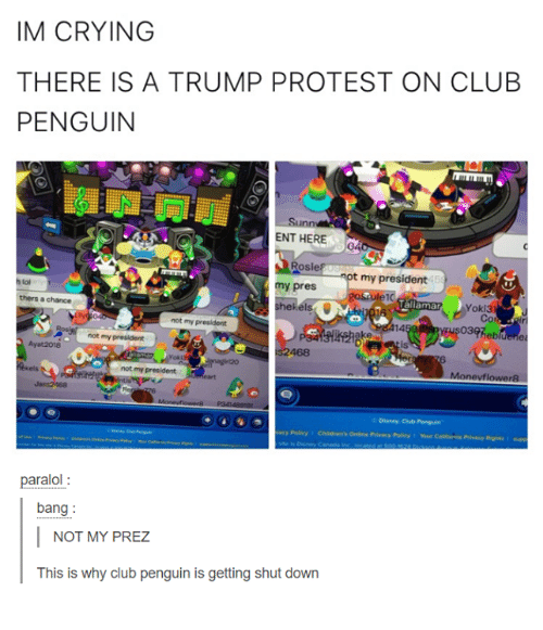 Club, Crying, and Disney: IM CRYING  THERE IS A TRUMP PROTEST ON CLUB  PENGUIN  ENT HERE  RoS  osie  my president  10  Moll  my pres  aliamar  Yoki3  Co  thers a chance  not my  14  theb  not my president  Ayat2018  468  not my president  C Disney Club Penguin  paralol:  bang:  NOT MY PREZ  This is why club penguin is getting shut down