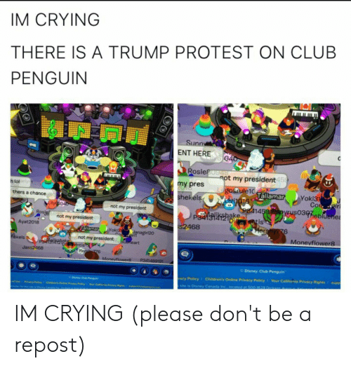 Club, Crying, and Disney: IM CRYING  THERE IS A TRUMP PROTEST ON CLUB  PENGUIN  Sunny  ENT HERE 04o  Rosie ot my president45  9748  my pres  Lgosrule10  oTTallamar  h lol  Yoki31  Cor ir  shekels  thers a chance  Lilye oo  not my president  P shakeE414592yrus0397hebldenes  s2468  ROs  Dretis  not my president  Ayat2018  Hershy776  Taliamar  Yoki31  C anagirl20  ideneart  not my president  ekels  Moneyflower8  D entis  Jass2468  Hersi 776  P341489191  Monevflower8  Disney Club Penguin  supp  Children's Online Privacy Policy  vacy Policy  Your California Privacy Rights  Daney Cub Pn  site is Disney Canada inc. located at 500-1628 Dickson  of Use  CNde's Onine Pvacy Py  C  Pracy Plcy  Priacy ights IM CRYING (please don't be a repost)