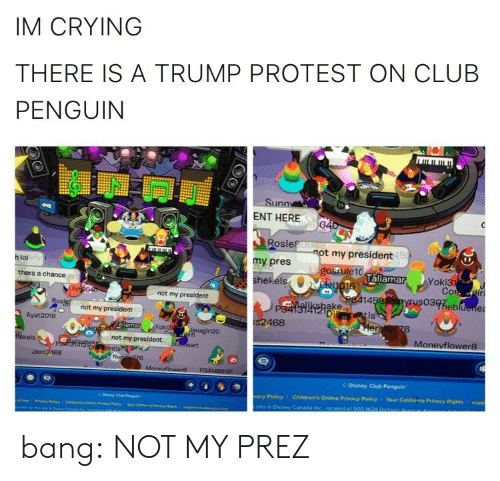 site: IM CRYING  THERE IS A TRUMP PROTEST ON CLUB  PENGUIN  Sunn  ENT HERE  Rosie  my pres  hekéls  t my president  15  h lol  laliamar  Yoki3  thers a chance  not my president  14  03heb  ake  Di  not my president  is  Ayat 2018  468  6  oki3  Monevflower8  kels  not my president  Jass2468  Disney Club Penguin  acy Policy  Children's Online Privacy Policy 1 Your California Privacy Rights I supp  site is Disney Caneda bang:  NOT MY PREZ