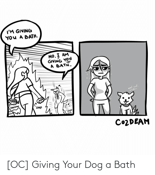 bath: I'M GIVING  YOU A BATH.  NO. I AM  GIVING YOU  A BATH.  woof woof,  bitches.  SHAMPOO  SOAP  CO2DEAM [OC] Giving Your Dog a Bath