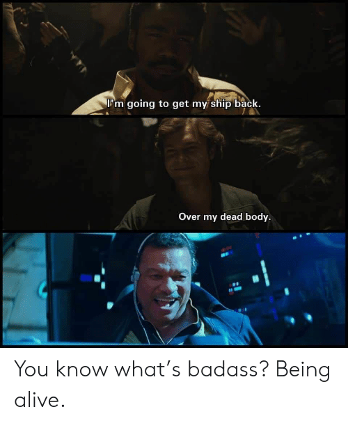 Alive, Badass, and Back: I'm going to get my ship back.  Over my dead body You know what's badass? Being alive.