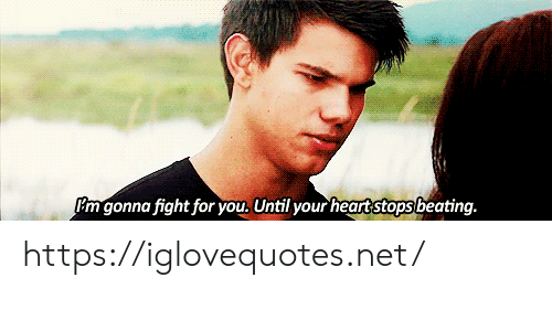 Fight, Net, and You: Im gonna fight for you, Until your heartstops beating. https://iglovequotes.net/