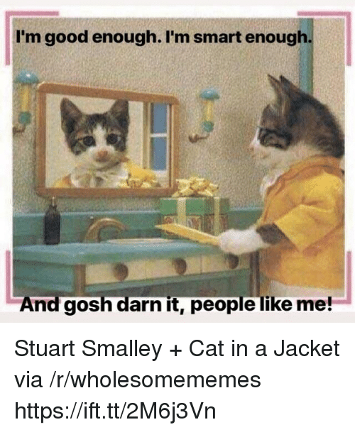 Good, Cat, and Smart: I'm good enough. I'm smart enough  And gosh darn it, people like me! Stuart Smalley + Cat in a Jacket via /r/wholesomememes https://ift.tt/2M6j3Vn