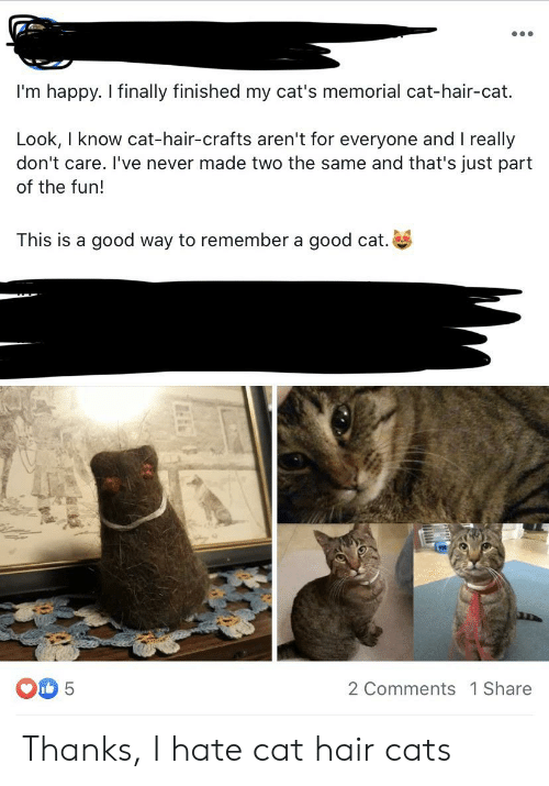 Cats, Good, and Hair: I'm happy. I finally finished my cat's memorial cat-hair-cat.  Look, I know cat-hair-crafts aren't for everyone and I really  don't care. I've never made two the same and that's just part  of the fun!  This is a good way to remember a good cat.  5  2 Comments 1 Share Thanks, I hate cat hair cats