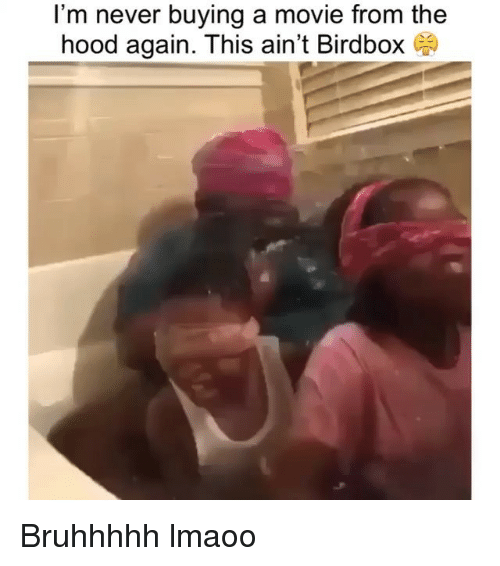 Funny, The Hood, and Movie: I'm never buying a movie from the  hood again. This ain't Birdbox Bruhhhhh lmaoo