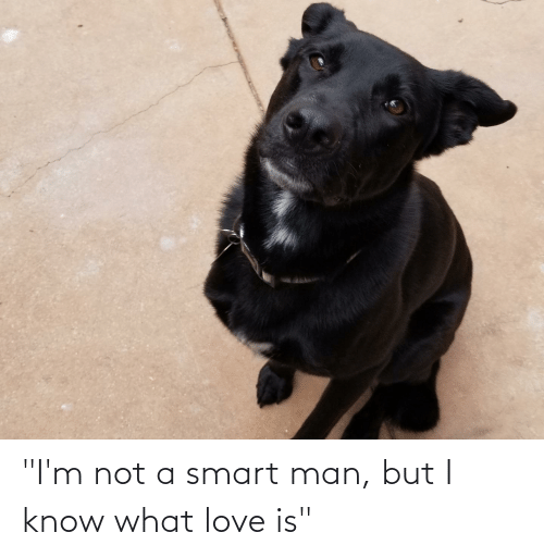 "Love Is: ""I'm not a smart man, but I know what love is"""