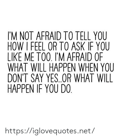 How, Ask, and Net: I'M NOT AFRAID TO TELL YOU  HOW I FEEL OR TO ASK IF YOU  LIKE ME TOO. I'M AFRAID OF  WHAT WILL HAPPEN WHEN YOU  DON'T SAY YES.OR WHAT WILL  HAPPEN IF YOU DO. https://iglovequotes.net/
