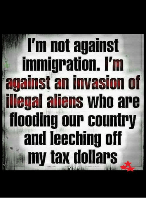 Memes, 🤖, and Invasion: I'm not against  immigration. I'm  against an invasion of  illegal aliens who are  flooding our country  and leeching off  my tax dollars