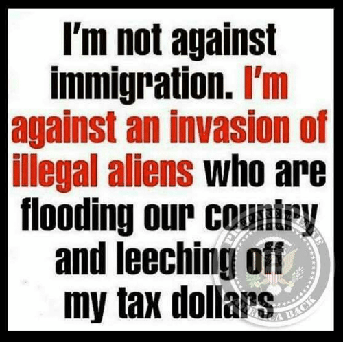 Memes, Aliens, and Immigration: I'm not against  immigration. I'm  against an invasion of  illegal aliens who are  flooding our countpy  and leeching off  my tax dollars