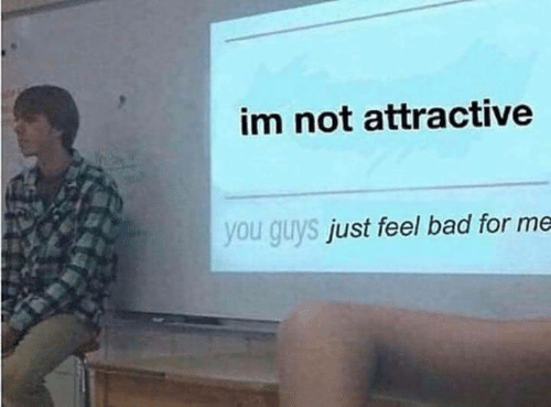 Bad, You, and For: im not attractive  you guys  just feel bad for me