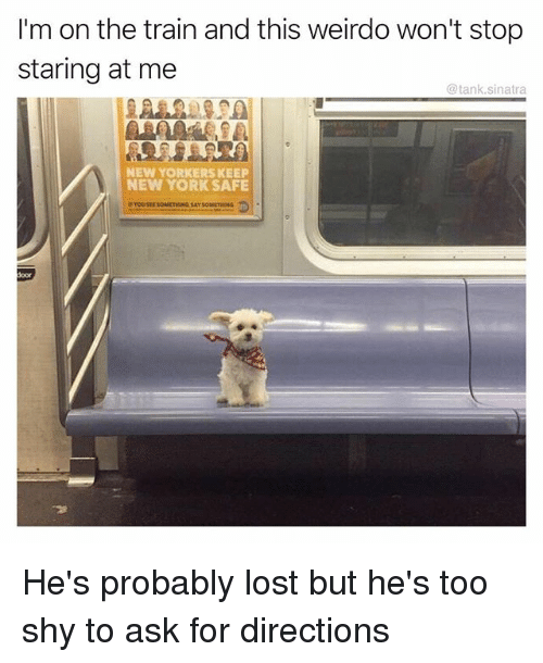 Funny, New York, and Lost: I'm on the train and this weirdo won't stop  staring at me  @tank.sinatra  NEW YORKERS KEEP  NEW YORK SAFE  oor He's probably lost but he's too shy to ask for directions