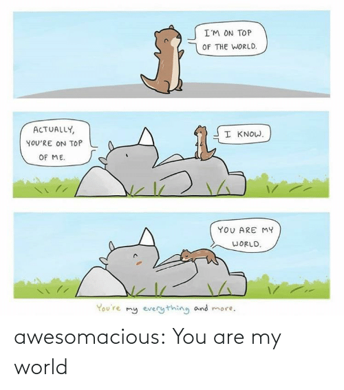 Know Youre: I'M ON TOP  OF THE WORLD.  ACTUALLY,  I KNOW.  YOU'RE ON TOP  OF ME.  YOU ARE MY  WORLD.  You're my everything and more. awesomacious:  You are my world