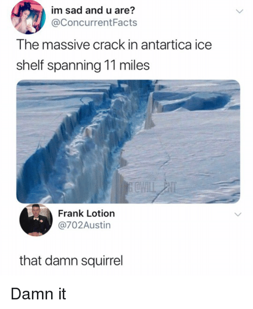 Memes, Squirrel, and Sad: im sad and u are?  @ConcurrentFacts  The massive crack in antartica ice  shelf spanning 11 miles  Frank Lotion  @702Austin  that damn squirrel Damn it