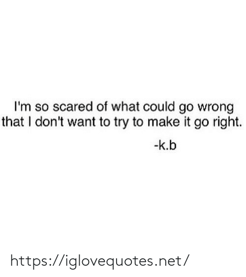 scared: I'm so scared of what could go wrong  that I don't want to try to make it go right.  -k.b https://iglovequotes.net/